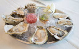 Fresh raw oysters royalty free stock images