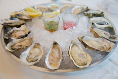Fresh raw oysters. It's has five kind of oyster Royalty Free Stock Photo