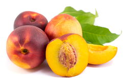 Fresh raw peaches on white. Fruit background Royalty Free Stock Photography