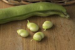 Fresh raw peeled broad beans. Close up Stock Photography