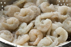 Fresh raw peeled shrimp. In a colander close up Royalty Free Stock Image