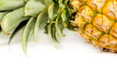 Fresh and raw pineapple. On a white background Stock Photos