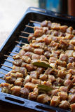 Fresh raw pork meat. Shashlik on skewers Royalty Free Stock Photos