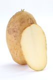 Fresh raw potato. Close - up small new and fresh raw potato Royalty Free Stock Photo