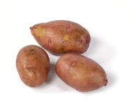 Fresh raw potatoes. On white background with shadows. Is not isolated image Stock Images
