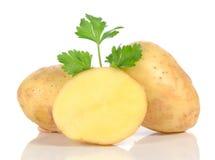 Fresh raw potatoes Stock Images