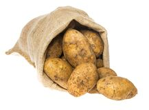 A fresh raw potatoes in a sack Stock Photography