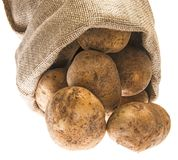 A fresh raw potatoes in a sack Stock Image