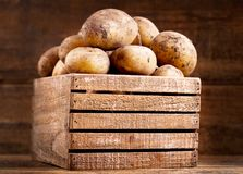 Fresh raw potatoes in a wooden box. On wooden background Stock Images