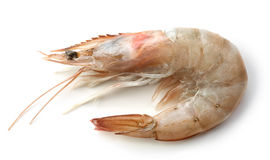 Fresh raw prawn Stock Photo