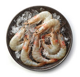 Fresh raw prawns on black plate Stock Photo