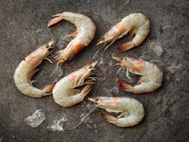 Fresh raw prawns on dark gray kitchen table Stock Photo