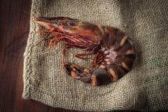 Fresh raw prawns. Delicious fresh prawn on wooden chopping board Royalty Free Stock Photo