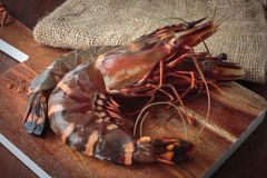 Fresh raw prawns. Delicious fresh prawns on wooden chopping board Stock Image