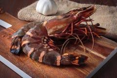 Fresh raw prawns Stock Images