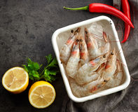 Fresh raw prawns Royalty Free Stock Image