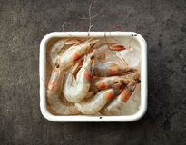 Fresh raw prawns in metallic bowl Stock Images
