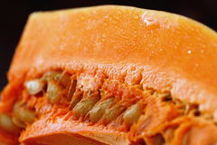Fresh raw pumpkin. Closeup on wooden background Stock Photography