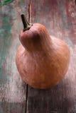 Fresh raw pumpkin Royalty Free Stock Image