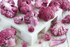Fresh raw purple cauliflower. On a wooden board close up Royalty Free Stock Image