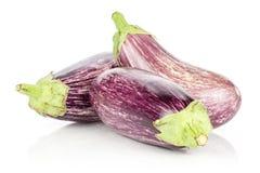 Fresh Raw purple striped Eggplant isolated on white. Three striped purple eggplants isolated on white background Stock Image