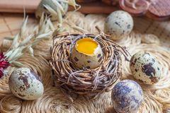 Fresh raw quail eggs in the nest on rustic straw and wooden vintage background stock image