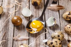 Fresh quail egg. Fresh raw quail eggs in spoon on wooden background Stock Photo