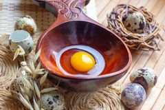 Fresh raw quail eggs in wooden spoon on rustic straw and wooden vintage background. royalty free stock image