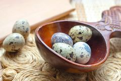 Fresh raw quail eggs in wooden spoon on straw and wooden vintage background stock photo