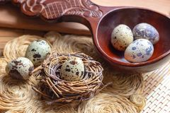 Fresh raw quail eggs in wooden spoon on rustic straw and wooden vintage background. stock photography