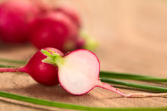 Fresh Raw Radish. Half with chives (Selective Focus, Focus on the front surface of the radish Stock Images