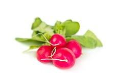 Fresh raw radish on white Stock Images