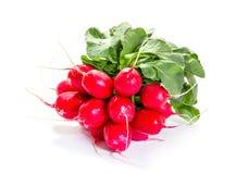 Fresh raw radishes Stock Photography