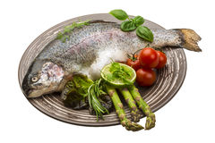 Fresh raw rainbow trout Royalty Free Stock Image