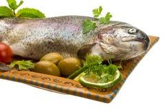 Fresh raw rainbow trout Royalty Free Stock Photo