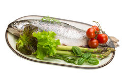 Fresh raw rainbow trout. Isolated in white background Royalty Free Stock Image