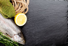 Fresh raw rainbow trout fish and spices. Fresh raw rainbow trout fish with spices on black stone with copy space. Toned Royalty Free Stock Images