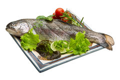 Fresh raw rainbow trout. Isolated on white background Royalty Free Stock Image