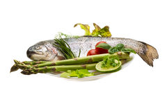 Fresh raw rainbow trout. Isolated in white background Royalty Free Stock Photos