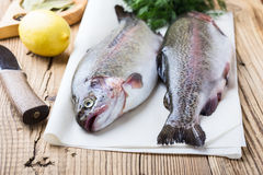 Fresh raw rainbow trout on parchment. On wooden rustic table, selective focus Stock Photos