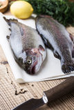 Fresh raw rainbow trout on parchment. On wooden rustic table, selective focus Royalty Free Stock Photos