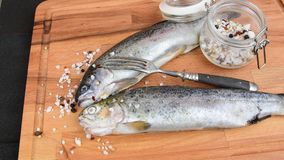 Fresh raw rainbow trouts with spices and fork on wooden board. Healthy food and dieting concept. Close-up.  stock video footage