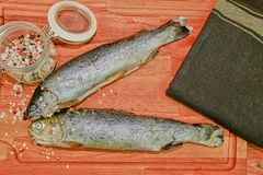 Fresh raw rainbow trouts with spices on wooden board. Healthy food and dieting concept. Close-up.  Royalty Free Stock Photo