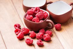 Raspberries in a cup and on a wooden table. Fresh raw raspberries in a cup and on a wooden table Royalty Free Stock Photo