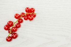Fresh raw red currant berry on grey wood. One whole red currant berry string flatlay isolated on grey wood stock photo