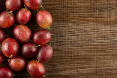 Fresh raw red gooseberry on brown wood. Lot of whole fresh red gooseberry hinnomaki variety left corner flatlay on brown wood Royalty Free Stock Images