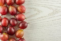 Fresh raw red gooseberry on grey wood. Lot of whole fresh red gooseberry hinnomaki variety left corner flatlay on grey wood Royalty Free Stock Image