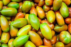 Fresh raw red and green tomatoes. In market close up carpet horizontal frame Royalty Free Stock Images