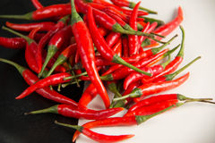 Fresh raw red hot chili peppers on plate. Closeup of  fresh raw red hot chili peppers on plate Royalty Free Stock Photos
