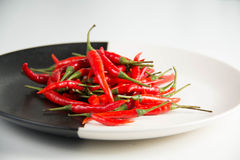 Fresh raw red hot chili peppers on plate. Royalty Free Stock Images